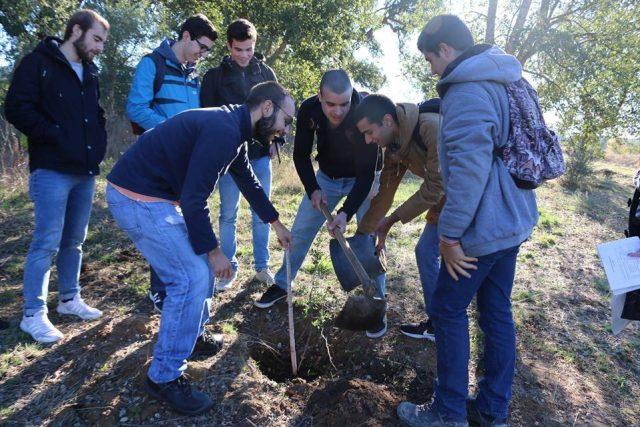150 alunos plantam 40 árvores em Torres Novas