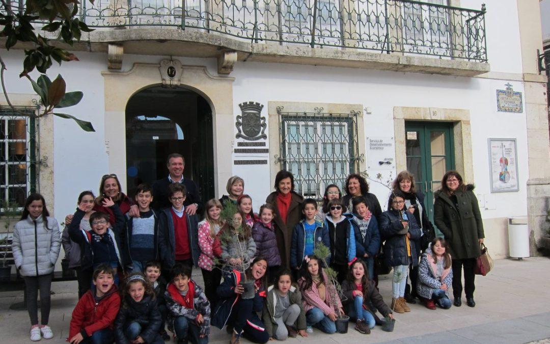 Abrantes | Agrupamento de Escolas Cidade do Entroncamento oferece espécies florestais